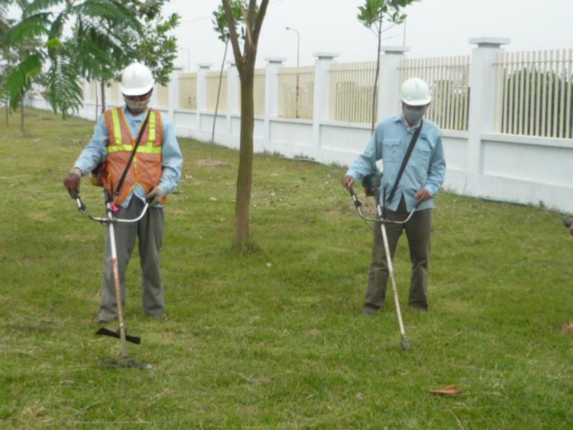 Dịch vụ cắt cỏ Lộc Nguyên